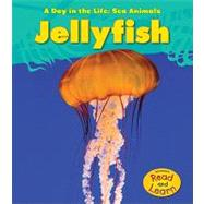 Jellyfish by Spilsbury, Louise A., 9781432940003