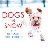 Dogs in Snow by Black & White Publishing Ltd, 9781785300004