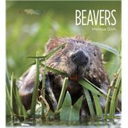 Beavers by Gish, Melissa, 9781628320008