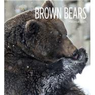 Brown Bears by Gish, Melissa, 9781628320015