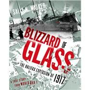 Blizzard of Glass The Halifax Explosion of 1917 by Walker, Sally M, 9781250040084
