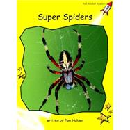Super Spiders by Holden, Pam, 9781877490095