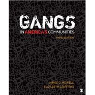 Gangs in America's Communities by Howell, James C.; Griffiths, Elizabeth A., 9781544300221