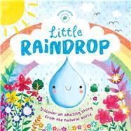 Little Raindrop by Joyce, Melanie; Maldonado, Gina; Bruce, Emily, 9781499880281