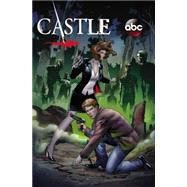Castle by Bunn, Cullen; Atkins, Robert; Sliney, Will; Mutti, Andrea, 9780785190295