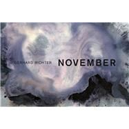 November by Richter, Gerhard, 9780993010316