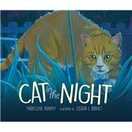 Cat in the Night by Dunphy, Madeleine; Brunet, Joshua S., 9780988330368