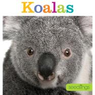 Koalas by Riggs, Kate, 9781628320442