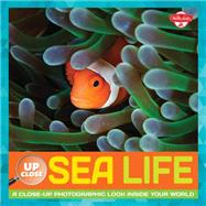 Sea Life by Fiedler, Heidi, 9781633220454
