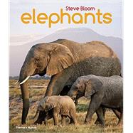 Elephants by Bloom, Steve; Wilson, David Henry, 9780500650554