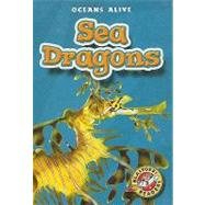 Sea Dragons by Schach, David, 9781600140556
