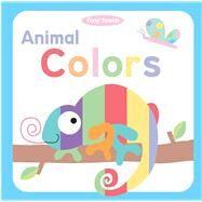 Animal Colors 9781499800579N
