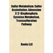 Sulfur Metabolism: Sulfur Assimilation, Adenosine 3',5'-bisphosphate, Cysteine Metabolism, Transsulfuration Pathway by , 9781158490646