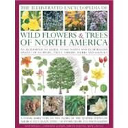 Illustrated Encyclopedia of Wild Flowers and Trees of North America : An Expert Reference and Identification Guide to over 2000 Wild Flowers and Plants from Every Continent with 4000 Beautiful Watercolours, Maps and Photographs by Russell, Tony, 9780754820765