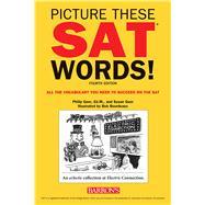 Picture These Sat Words! by Geer, Philip; Geer, Susan, 9781438010779