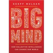 Big Mind by Mulgan, Geoff, 9780691170794