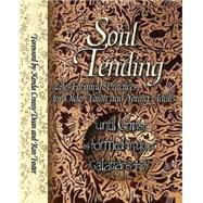 Soul Tending by Abingdon Press, 9780687030798