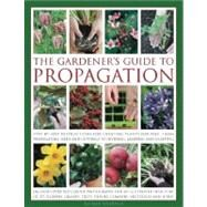 The Gardener's Guide to Propagation Step-by-step instructions for creating plants for free, from propagating seeds and cuttings to dividing, layering and grafting by Rosenfeld, Richard, 9780754820819