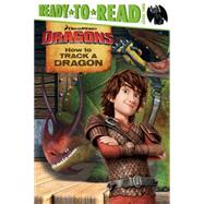 How to Track a Dragon by David, Erica, 9781481460873