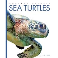 Sea Turtles by Riggs, Kate, 9781628320916