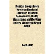 Musical Groups from Newfoundland and Labrador : The Irish Descendants, Buddy Wasisname and the Other Fellers, Wonderful Grand Band by , 9781157190929