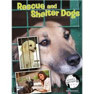 Rescue and Shelter Dogs by Summers, Alex, 9781634300940