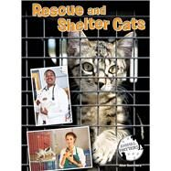 Rescue and Shelter Cats by Summers, Alex, 9781634300957