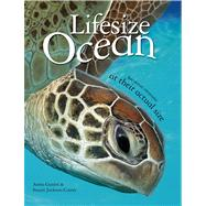 Lifesize: Ocean by Jackson-Carter, Stuart; Ganeri, Anita, 9780753470961