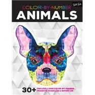 Color-by-Number Animals by Gilbert, Elizabeth T., 9781633220997