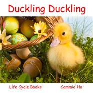 Duckling Duckling by Ho, Cammie; Meyer, Linda; Tang, Fiona, 9781943241002
