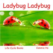 Ladybug Ladybug by Ho, Cammie; Meyer, Linda, 9781943241026