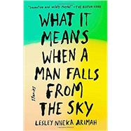 What It Means When a Man Falls from the Sky by Arimah, Lesley Nneka, 9780735211032