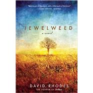 Jewelweed A Novel by Rhodes, David, 9781571311061