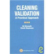 Cleaning Validation: A Practical Approach by Bismuth; Gil, 9781574911084