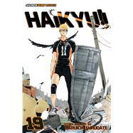 Haikyu!! 19 by Furudate, Haruichi, 9781421591094