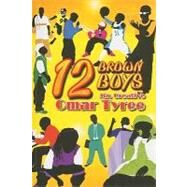 12 Brown Boys by Tyree, Omar, 9781933491127