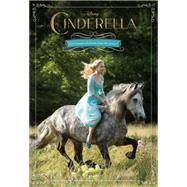 Cinderella Junior Novel by Rudnick, Elizabeth, 9781484711132
