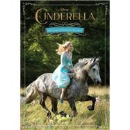 Cinderella Junior Novel by Rudnick, Elizabeth, 9781484711132