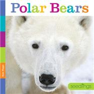 Polar Bears by Riggs, Kate, 9781628321159