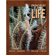 Principles of Life High School Edition by Hillis, David M.; Sadava, David E.; Heller, H. Craig; Price, Mary V., 9781429291170