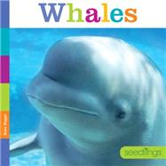 Whales by Riggs, Kate, 9781628321173