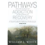 Pathways from the Culture of Addiction to the Culture of Recovery : A Travel Guide for Addiction Professionals at Biggerbooks.com