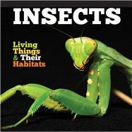 Insects by Jones, Grace, 9781786371263