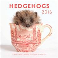 Hedgehogs 2016 Calendar by Rock Point, 9781631061332