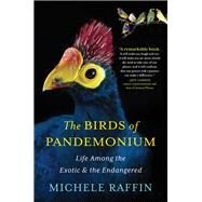 The Birds of Pandemonium by Raffin, Michele, 9781616201364