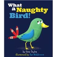 What a Naughty Bird! by Taylor, Sean; Widdowson, Dan, 9781499801385