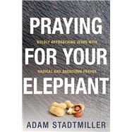Praying for Your Elephant Boldly Approaching Jesus with Radical and Audacious Prayer by Stadtmiller, Adam, 9780781411455