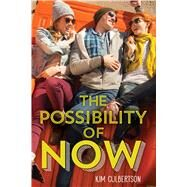 The Possibility of Now by Culbertson, Kim, 9780545731461