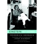 Einstein at Home by HERNECK, FRIEDRICHEISINGER, JOSEF, 9781633881464