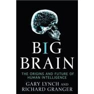 Big Brain : The Origins and Future of Human Intelligence by Lynch, Gary; Granger, Richard, 9780230611467